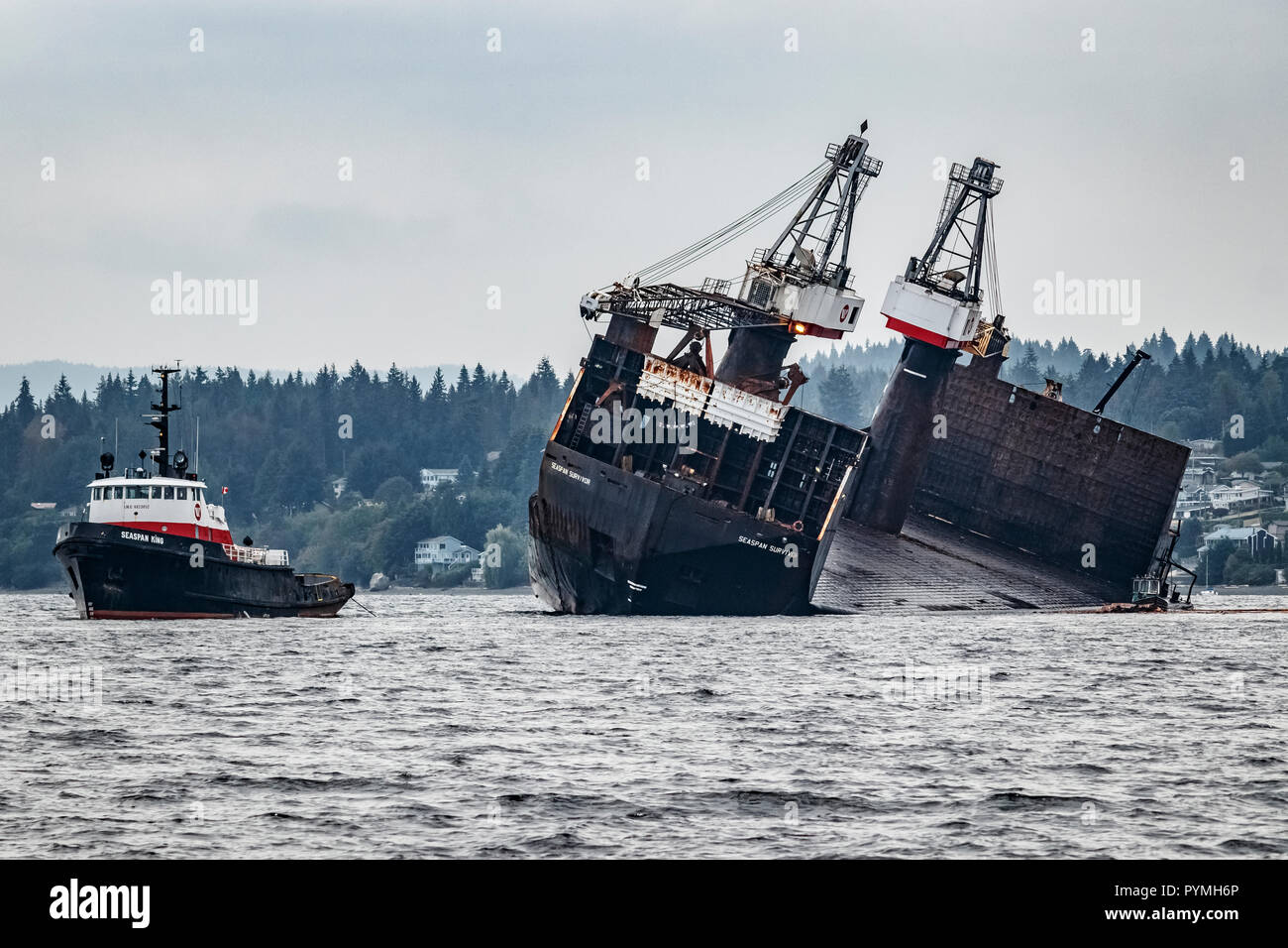 After dumping its load, the self-dumping log barge Seaspan Survivor lists to 20 degrees, flanked by a tug, the Seaspan King, and a tiny boom boat. - Stock Image