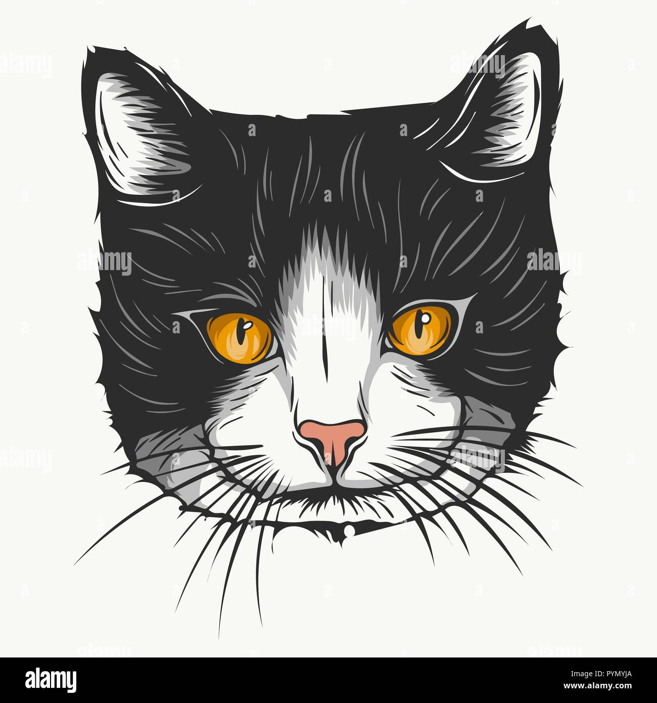 Vector sketch of a stylized kitten s face - Stock Vector