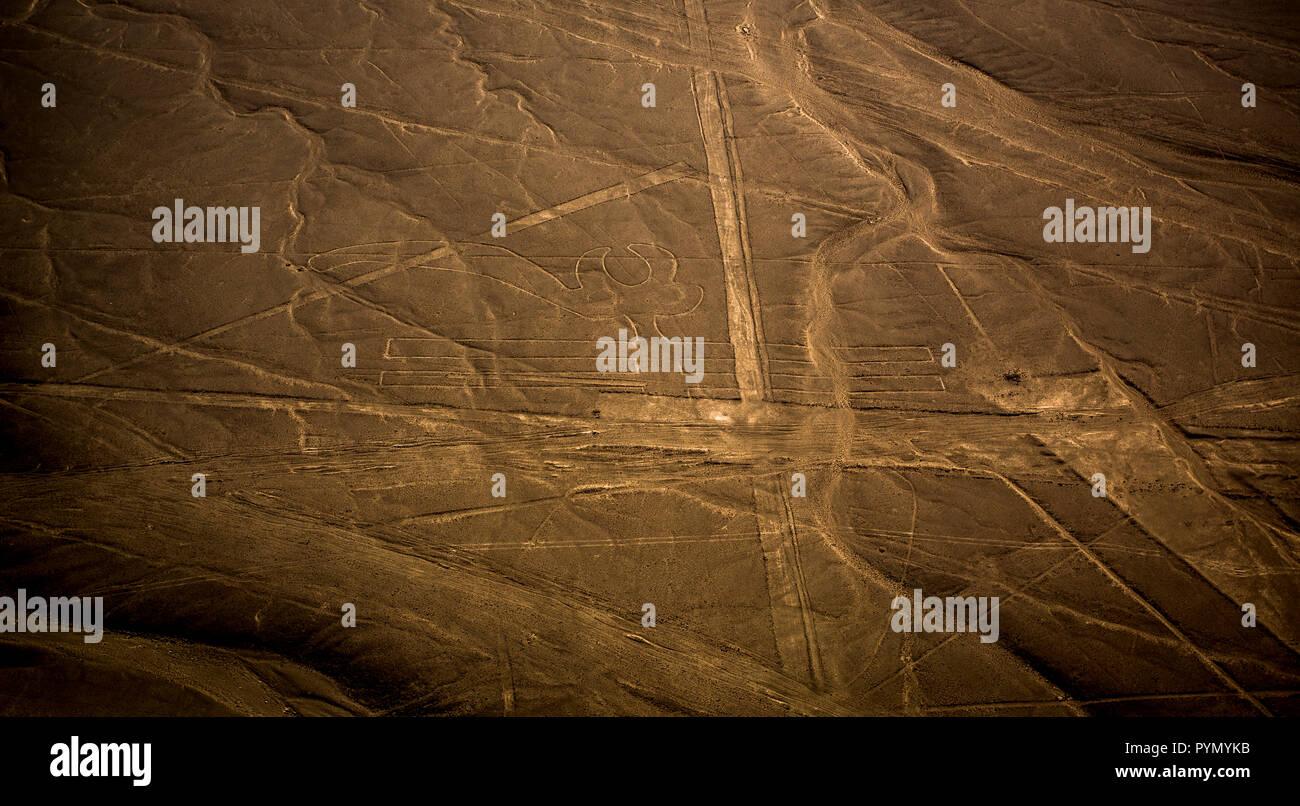 Blick von oben auf die Nazca Linien in Peru, Nazca, Südamerika - Stock Image