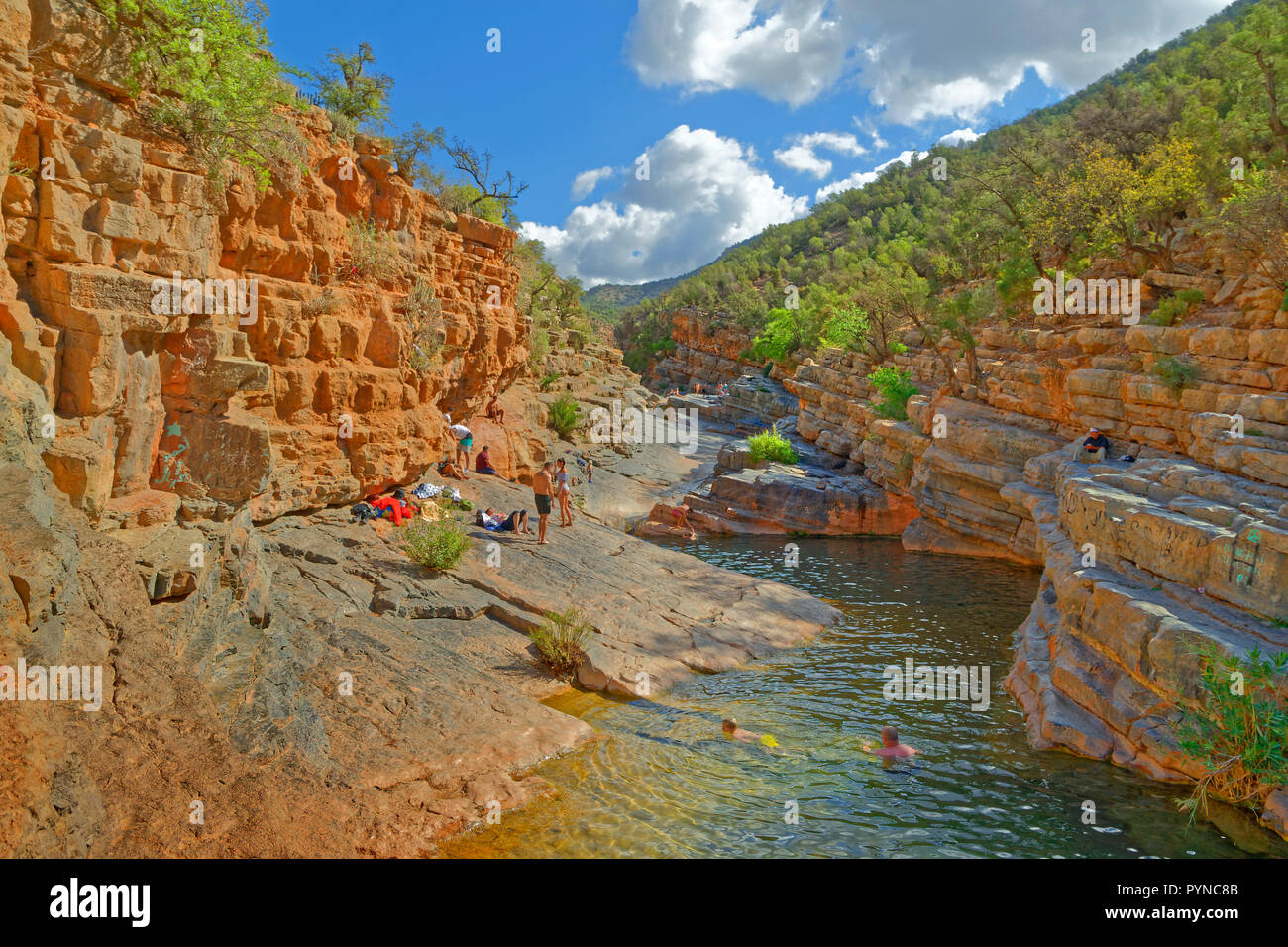 Ravine in the lower Atlas Mountains near Agadir, known as, and marketed under the name, Paradise Valley, Morocco, North West Africa. - Stock Image