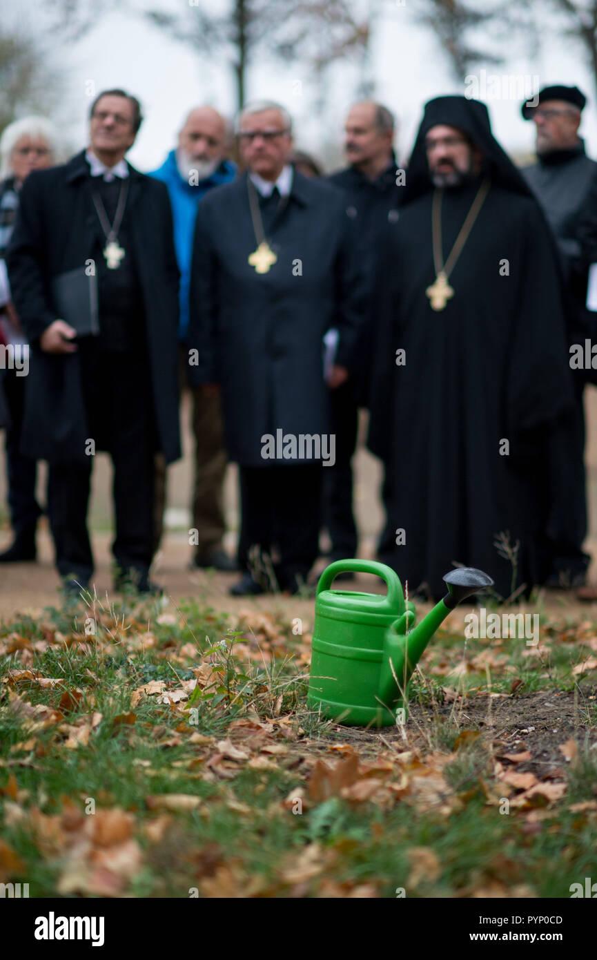29 october 2018 saxony anhalt lutherstadt wittenberg a watering