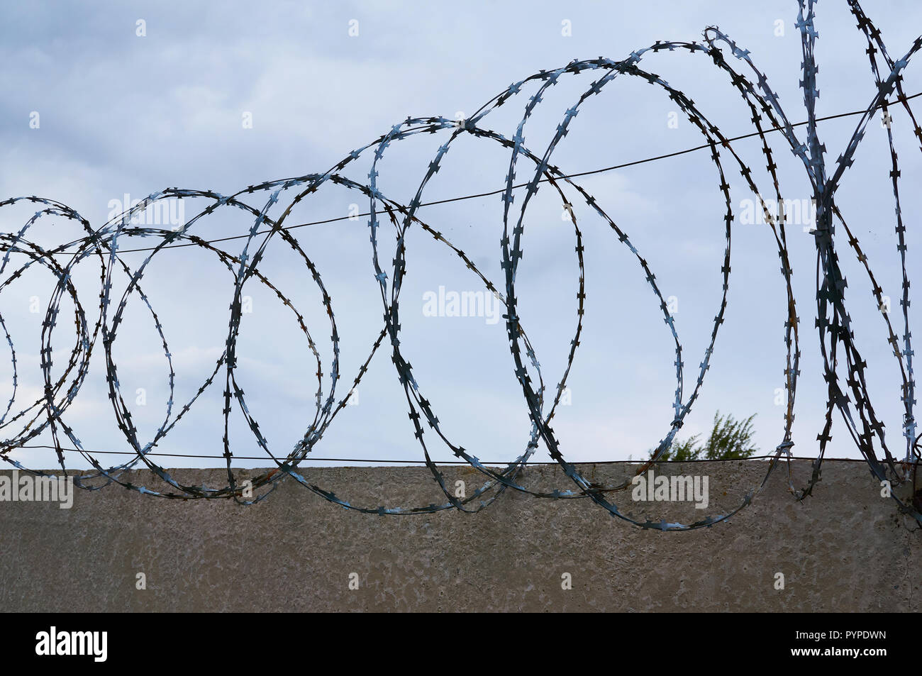 Barbed wire on the background of a concrete fence and cloudy sky. - Stock Image