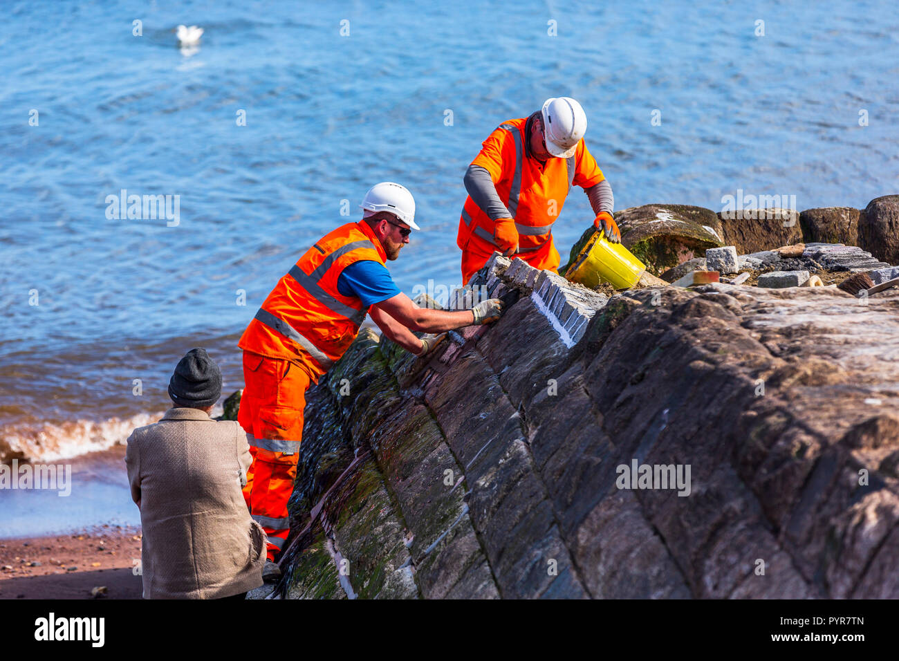 Repairing and rebuilding the sea wall defenses after the 2014 storms in Dawlish, Devon, UK. - Stock Image