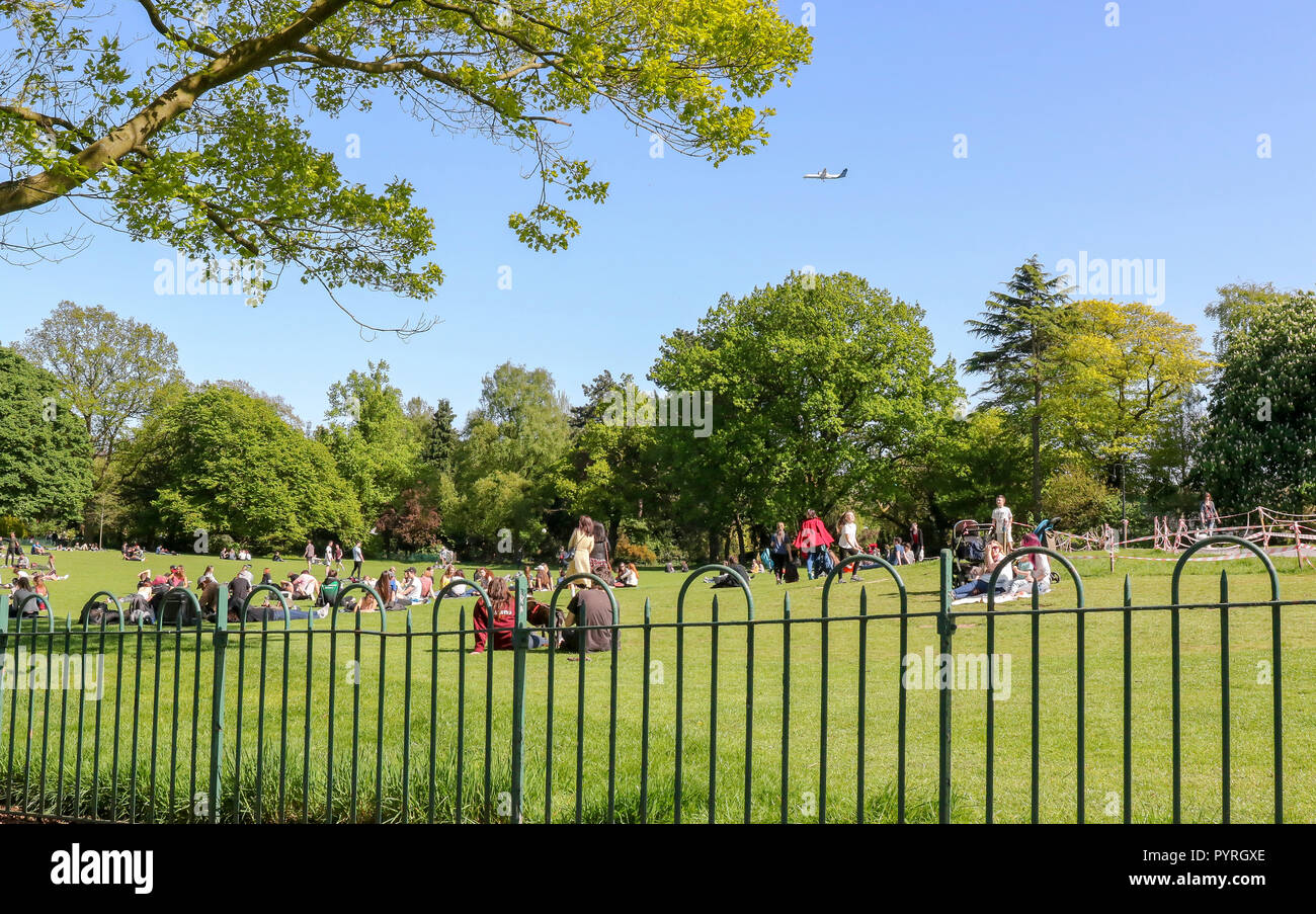 People on the lawn at Botanic Gardens Belfast - Stock Image