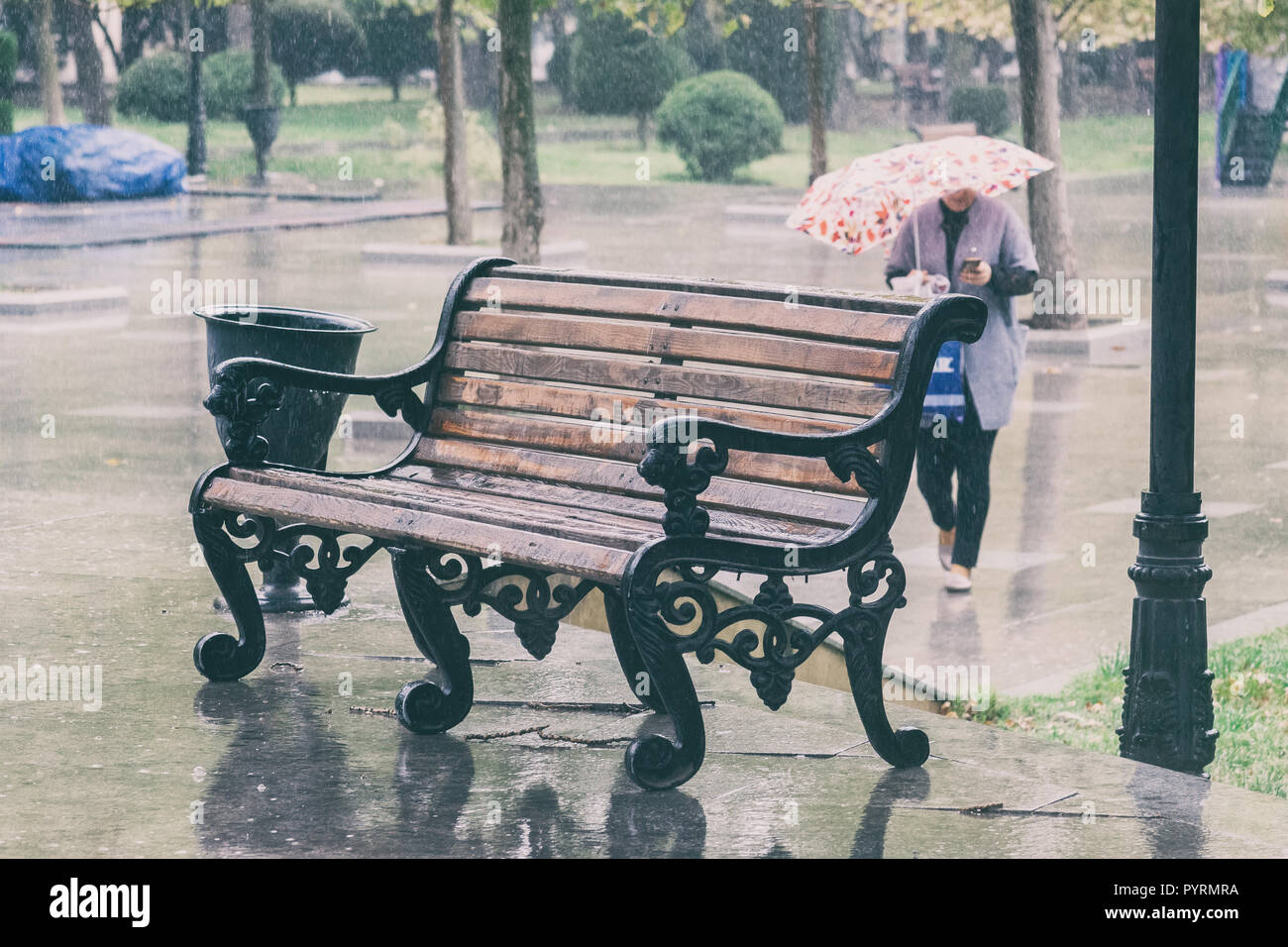 Wet bench under the rain in the city park - Stock Image