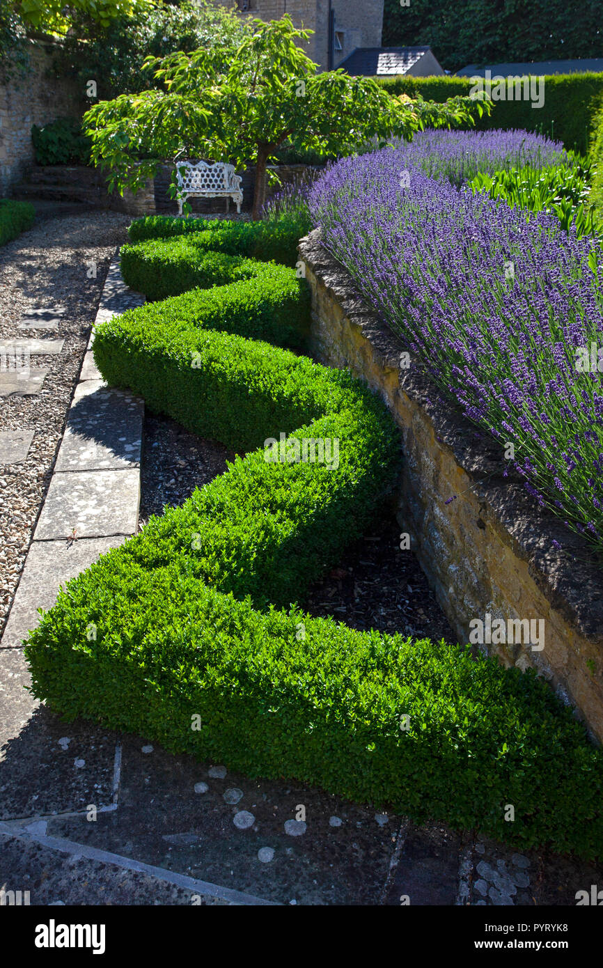 Lavender Hedge Stock Photos Lavender Hedge Stock Images Alamy