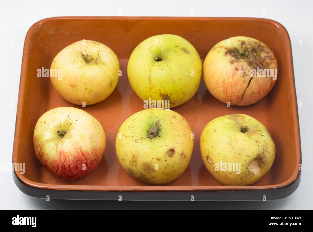 Windfall cooking apples that had been placed in a wheelbarrow outside a farm to be given away free to passers by. Ideal for making stewed apples. Phot - Stock Image