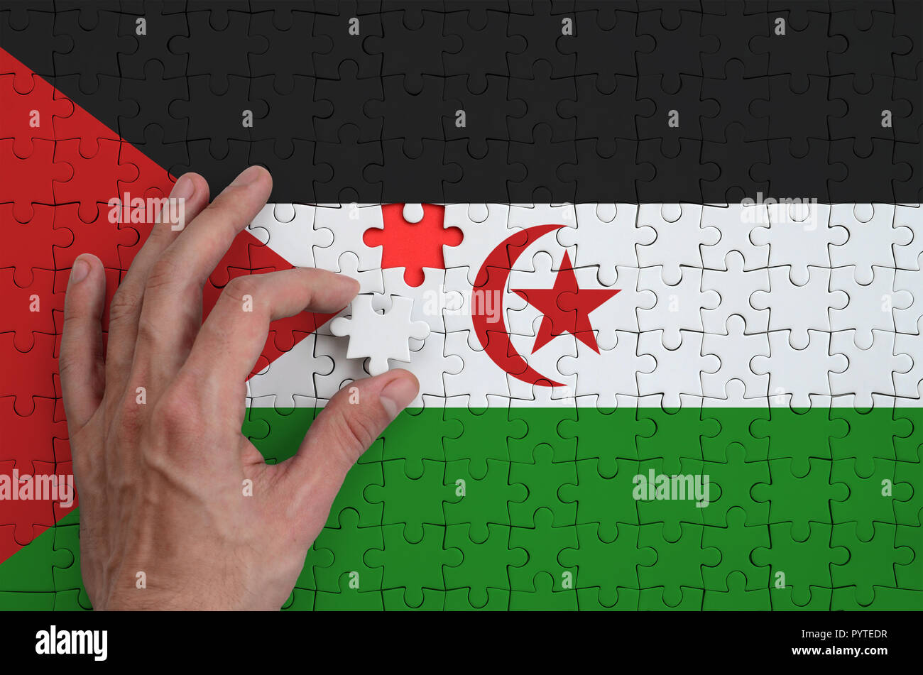 Western Sahara flag  is depicted on a puzzle, which the man's hand completes to fold. - Stock Image