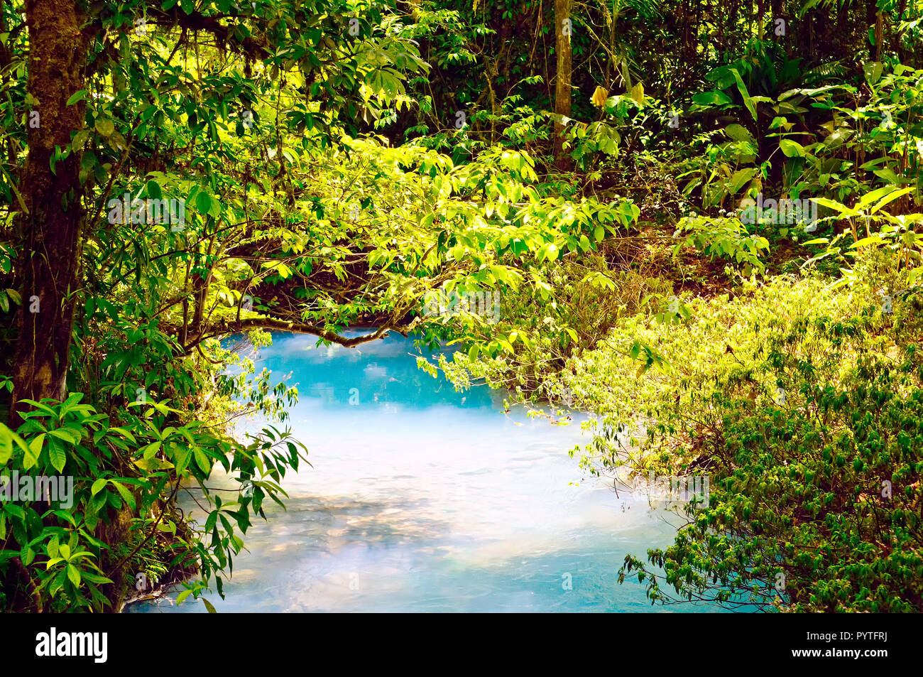 Celeste River in Costa Rica (Tenorio park) has a strong sky blue colour. - Stock Image