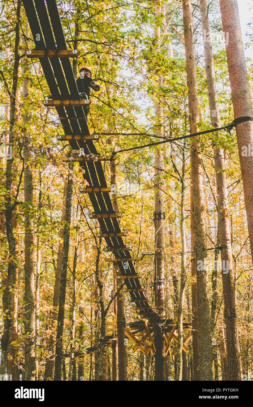 Tree top trail. path in the tress. Active sports. Recreation. Autumn scenes. - Stock Image
