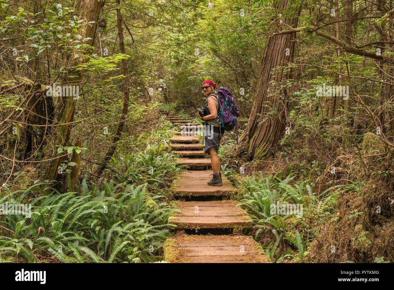 Middle age woman hiking, Cape Alava Trail, temperate rain forest, near Cape Alava, Pacific Coast, Olympic National Park, Washington state, USA - Stock Image