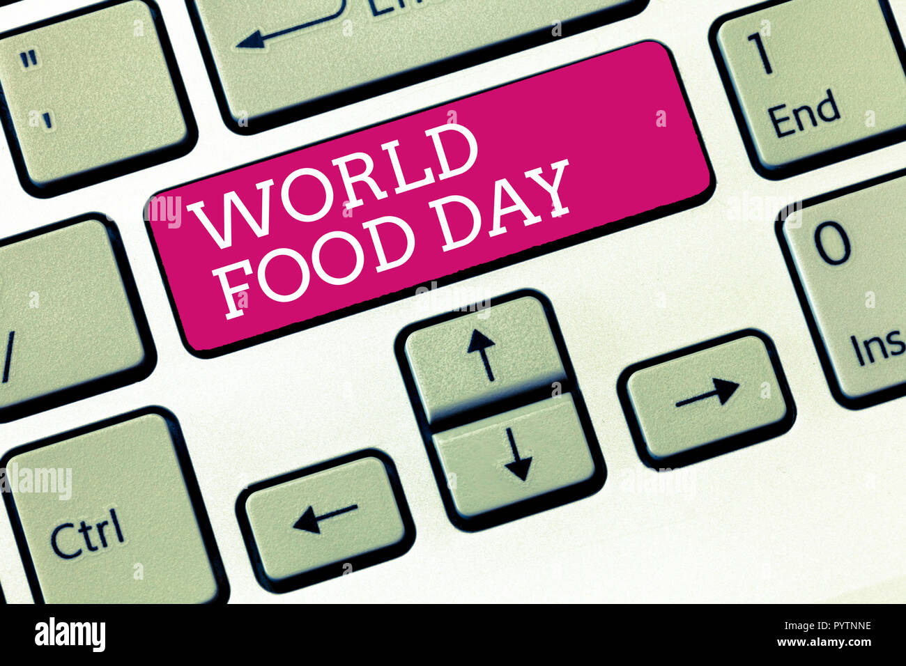 Handwriting text World Food Day. Concept meaning World day of action dedicated to tackling global hunger. - Stock Image
