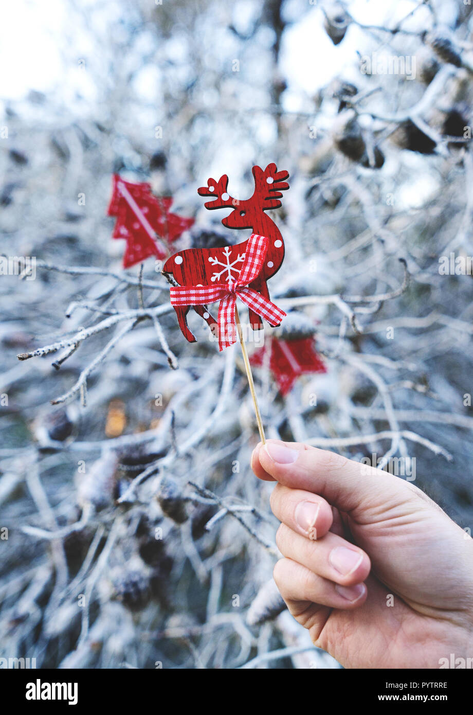Traditional scandinavian Christmas decorative wooden deer props in male hand on the blue natural background with branches of tree - Stock Image
