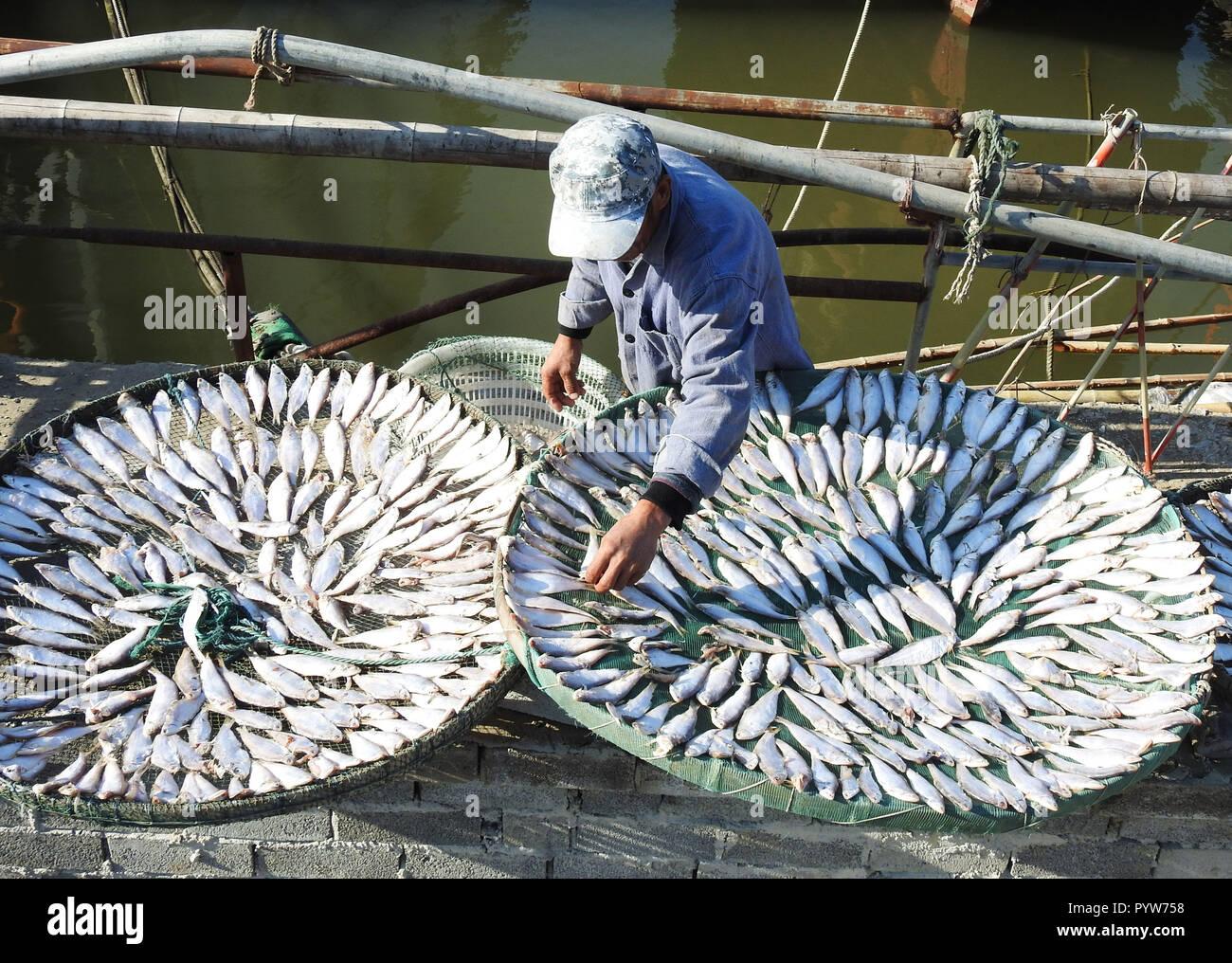 Lianyungang, China's Jiangsu Province. 30th Oct, 2018. A fisherman airs fish in Lianyun District of Lianyungang City, east China's Jiangsu Province, Oct. 30, 2018. Credit: Geng Yuhe/Xinhua/Alamy Live News - Stock Image