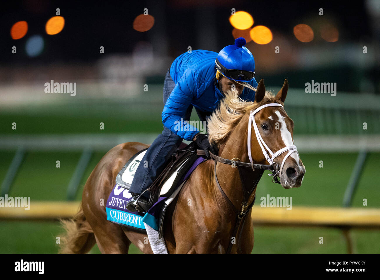 October 30 2018 Current Trained By Todd A Pletcher Exercises In Preparation For The Breeders Cup Juvenile Turf At Churchill Downs On