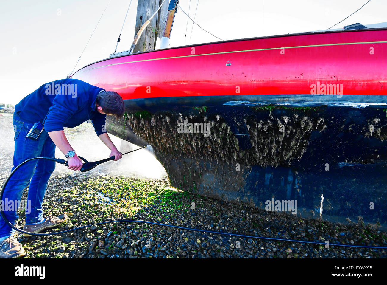 Man pressure hosing excessive algea weed growth off the hull of his X boat,Madame x )  as it rests against Itchenor's scrubbing off Dolphins Stock Photo