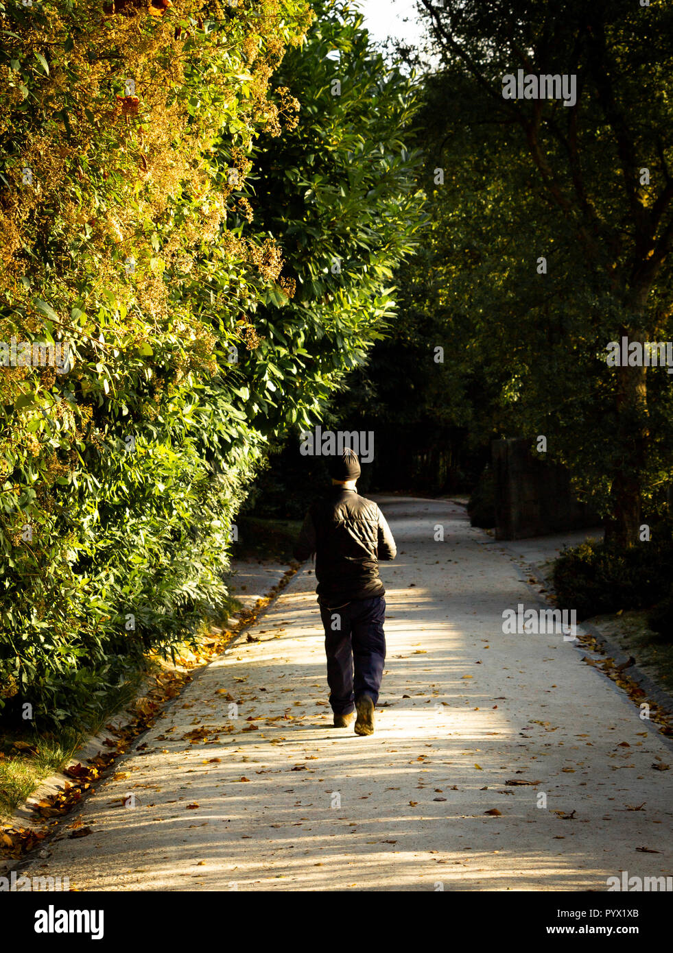 Man with a black cap runs in the park. Back View. - Stock Image
