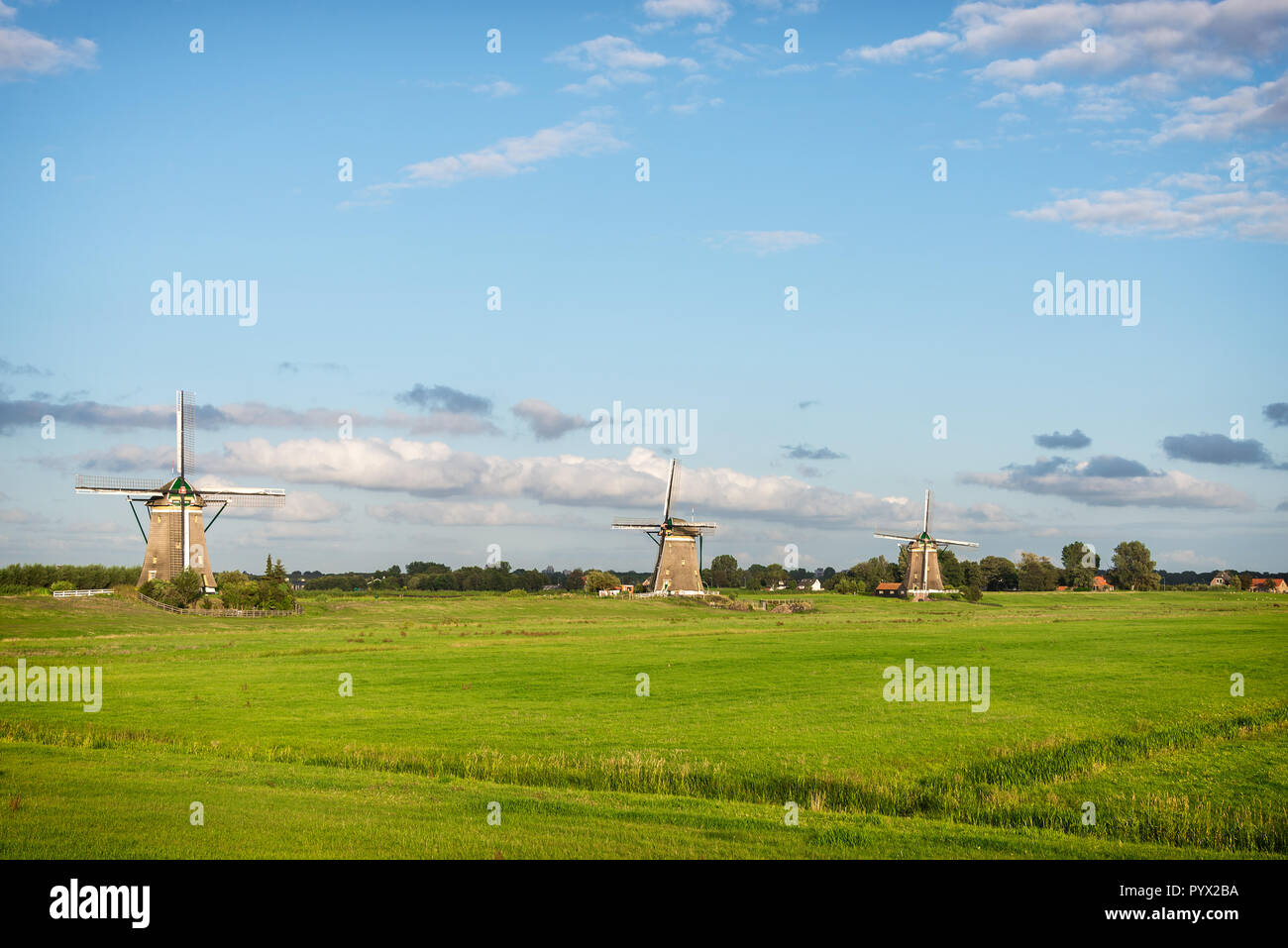 Three windmills in a dutch countryside landscape with pastureland in the polder near Stompwijk, the Netherlands. - Stock Image