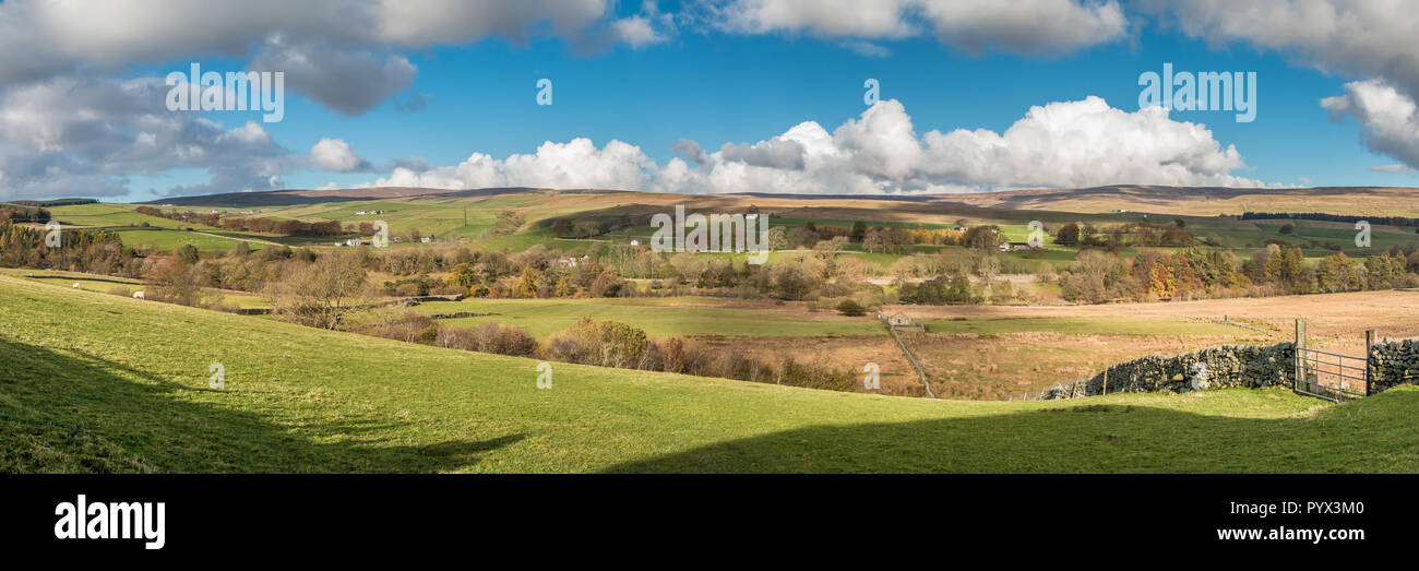 North Pennines AONB panoramic Landscape, Ettersgill, Teesdale from Hield House - Stock Image