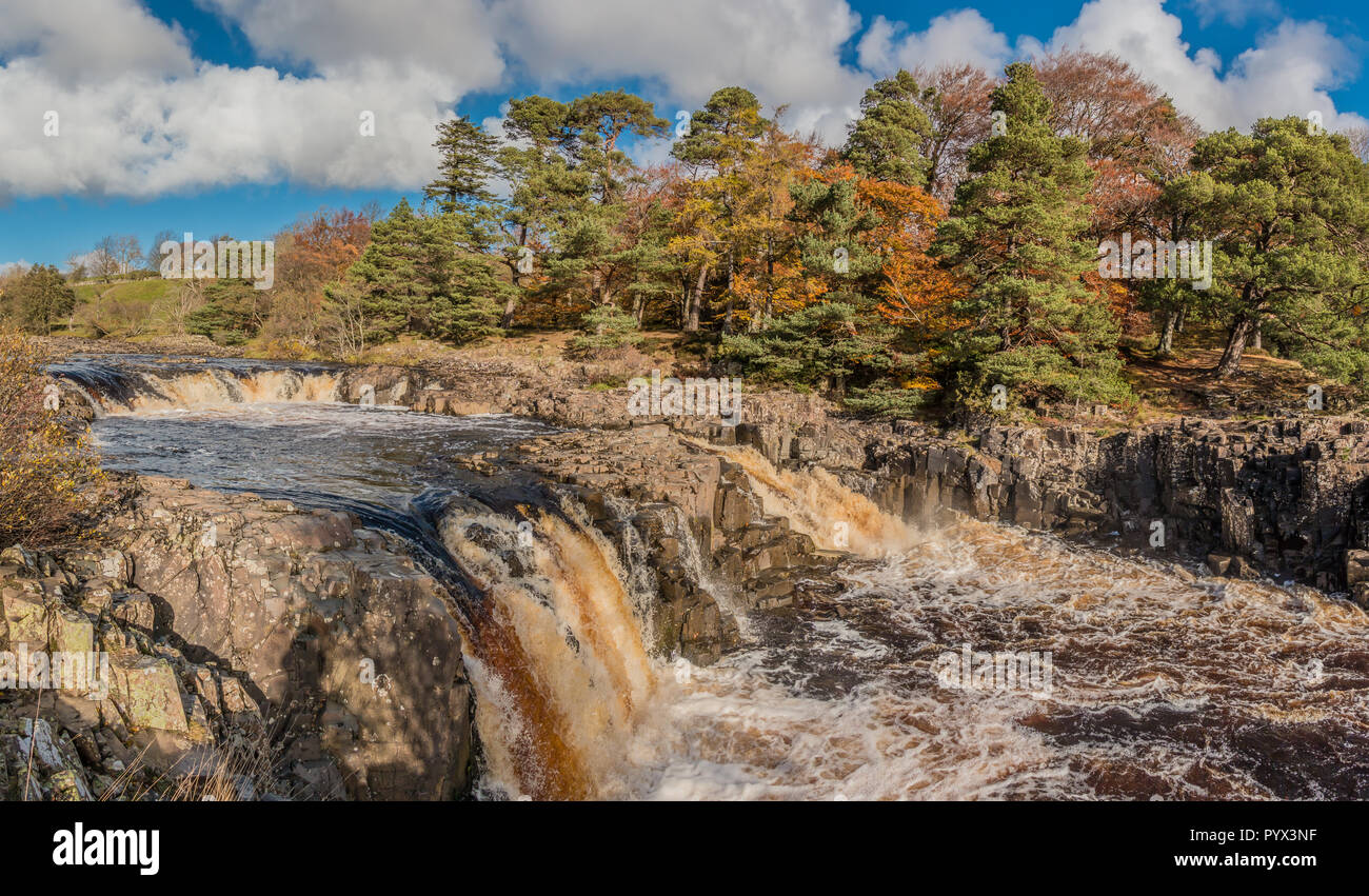 North Pennines AONB Landscape, panoramic view of Low Force Waterfall, Teesdale from the Pennine Way with autumn colours and bright sunshine Stock Photo