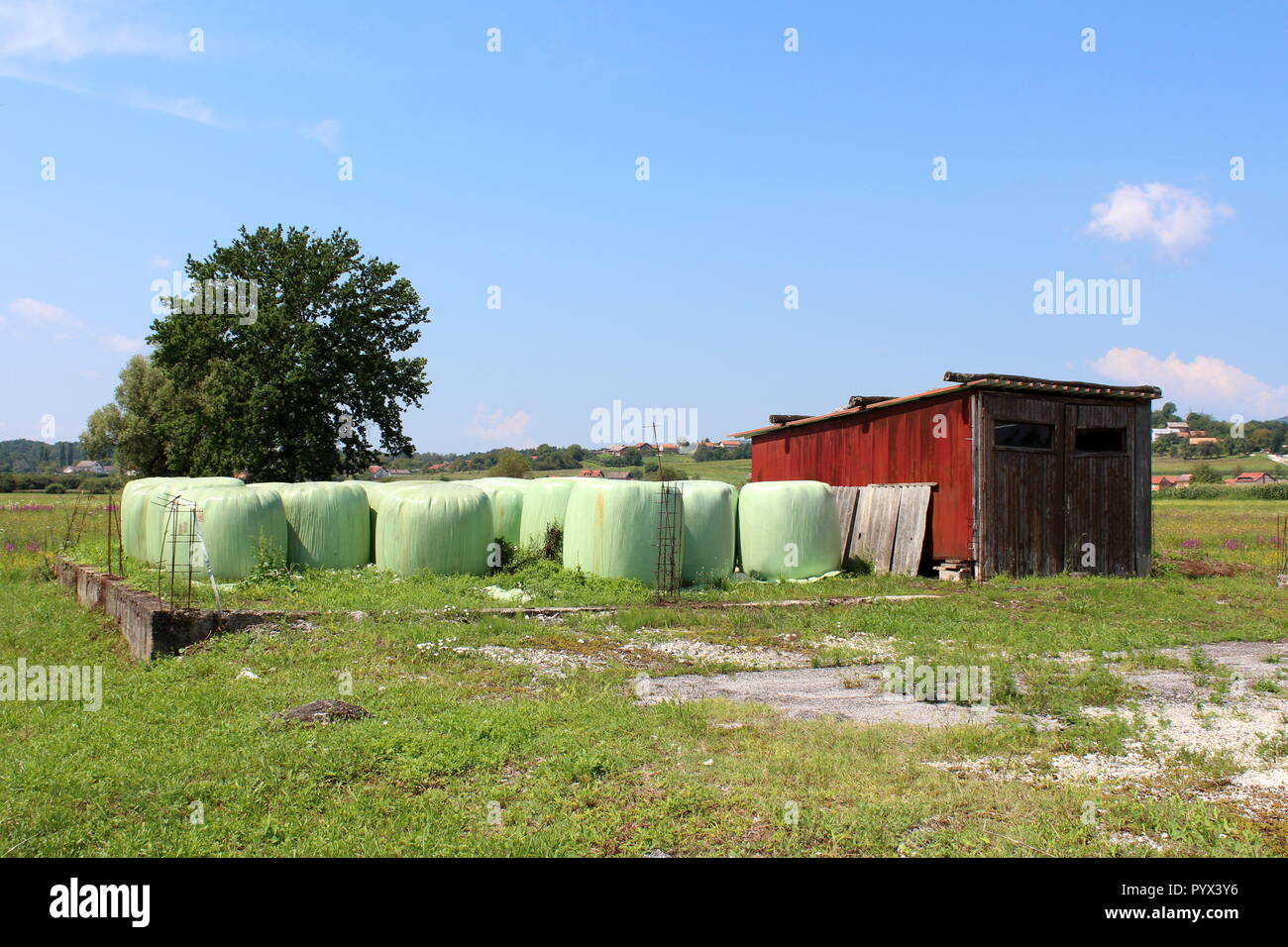 Hay bales wrapped in plastic left on unfinished concrete foundation next to wooden garage used as garden shed for storing tools - Stock Image