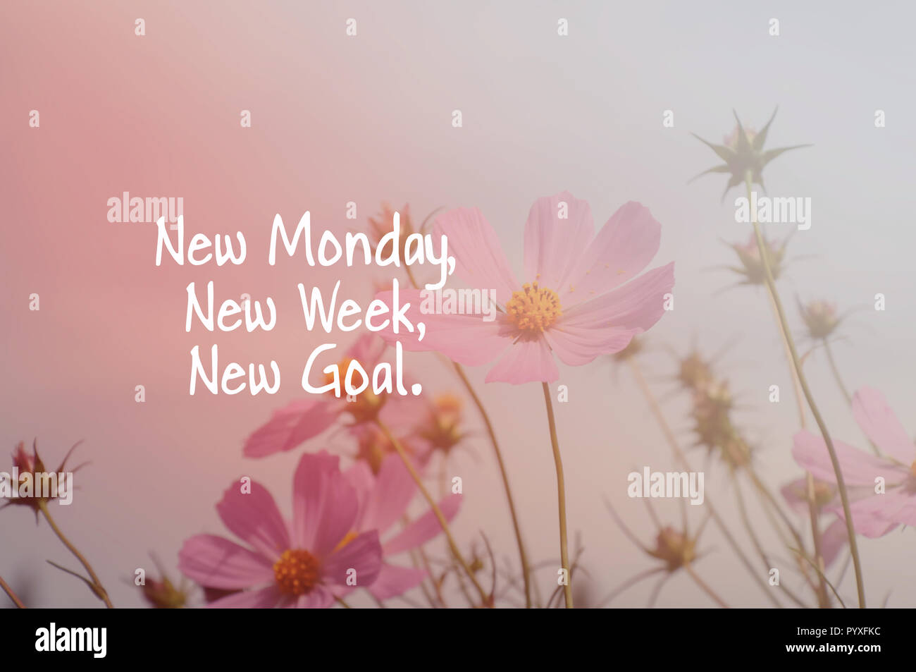 Inspirational quotes - New Monday, new week, new goal Stock ...