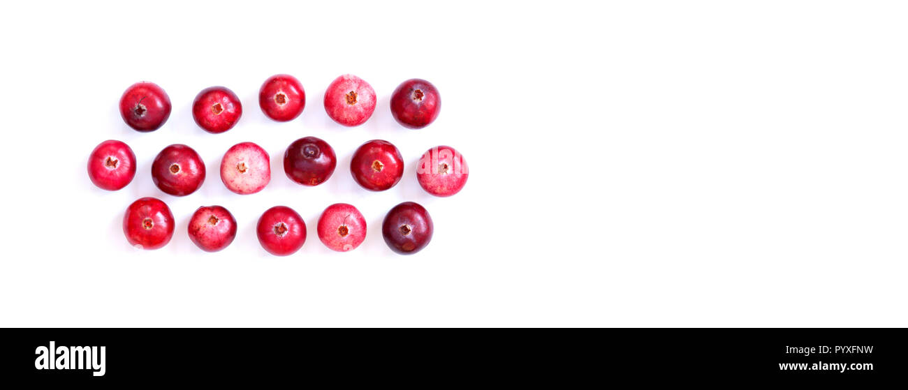 Arranged red ripe cranberries isolated on white. Macro view ripe forest berries, cut out background, copy space. - Stock Image