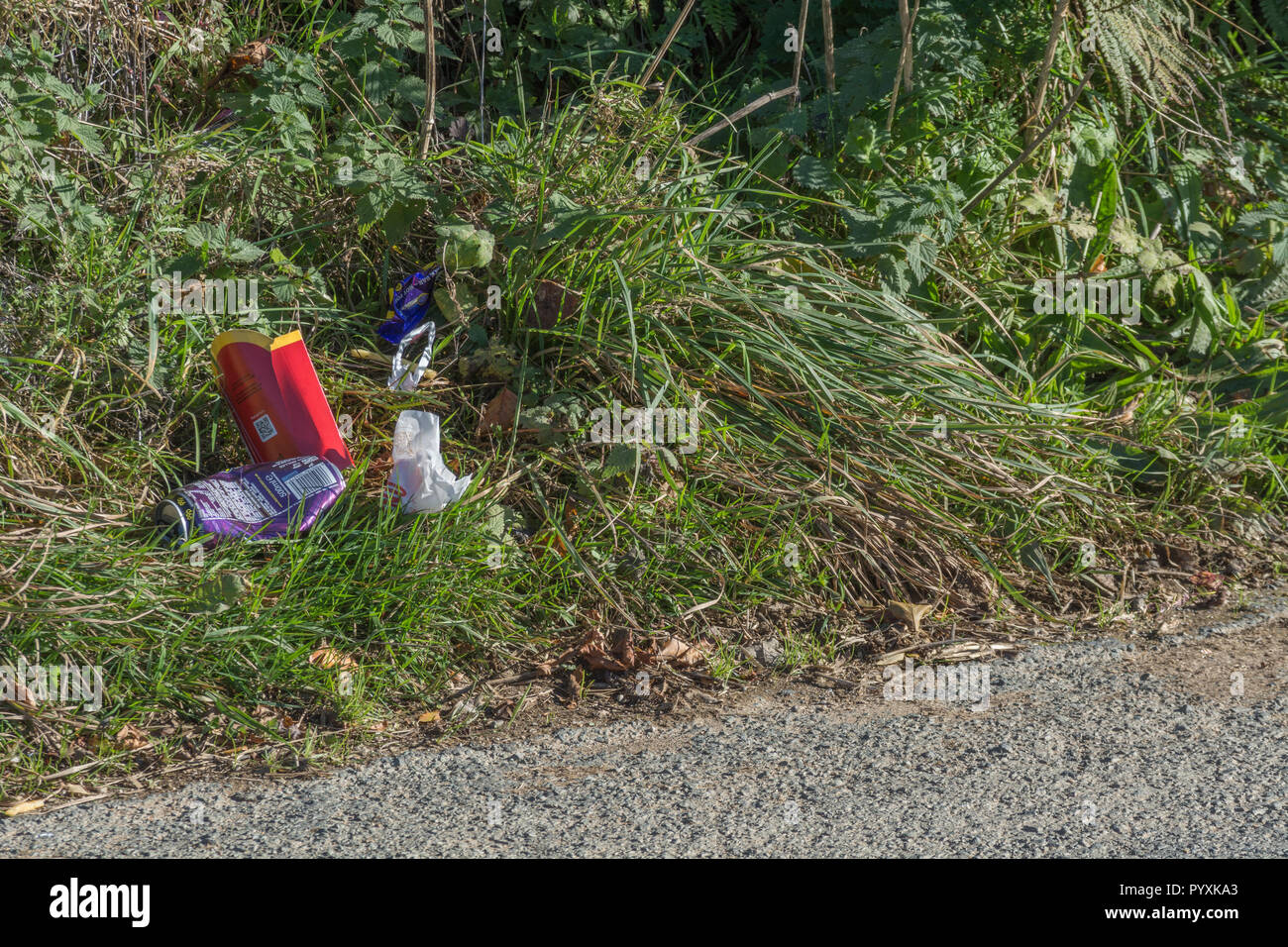 Stretch of litter-strewn country lane. Concept roadside litter UK. Keep Britain tidy, plastic waste in road. Stock Photo