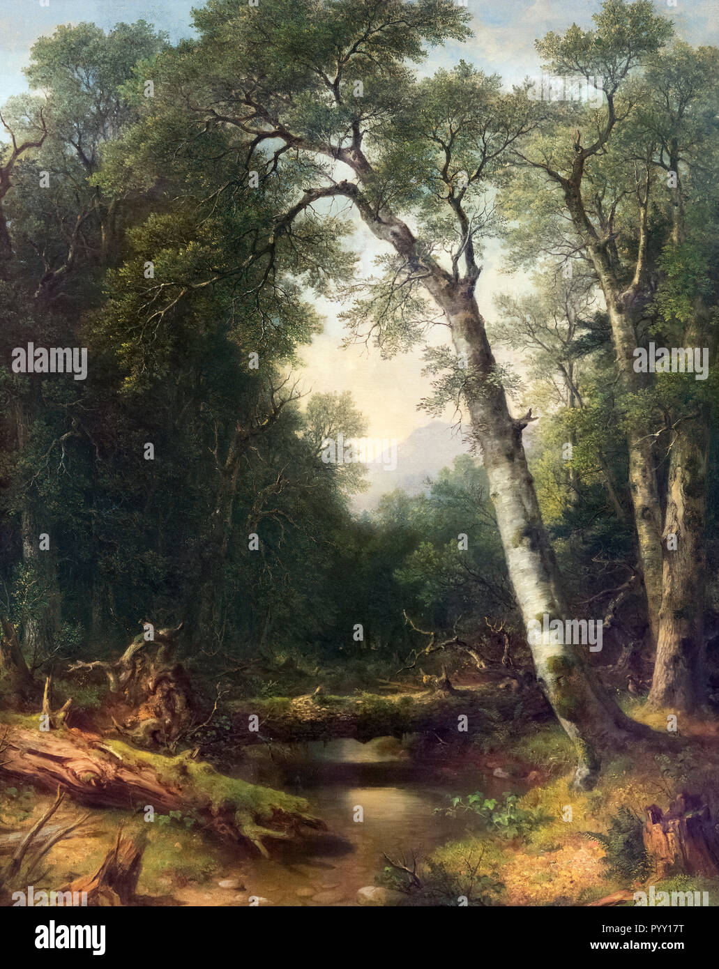 A Creek in the Woods by Asher Brown Durand (1896-1886), oil on canvas, 1865 - Stock Image
