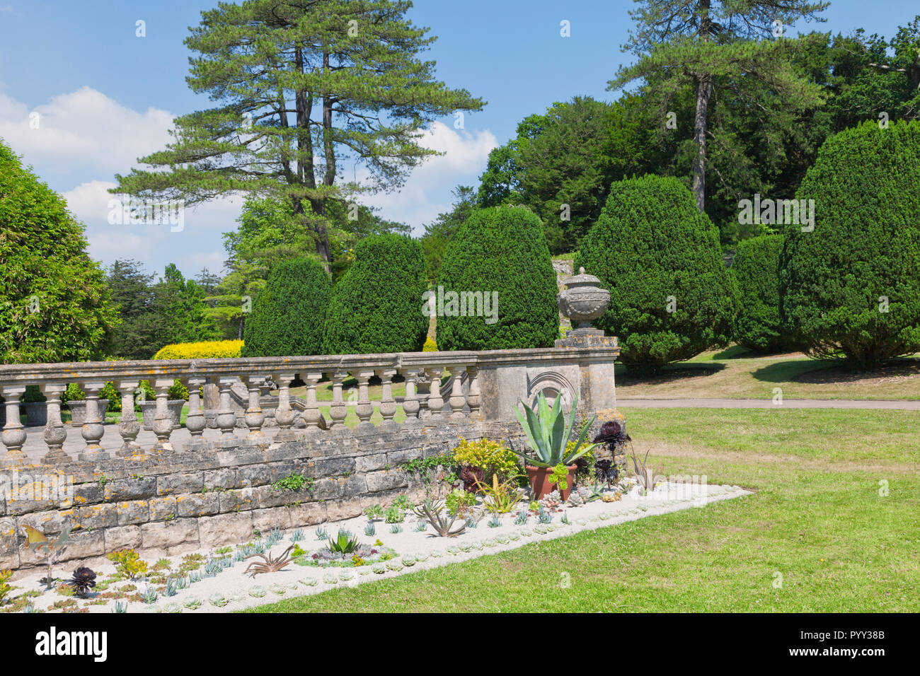 Landscaped English garden with mature trees, yew topiary on a sunny summer day . - Stock Image