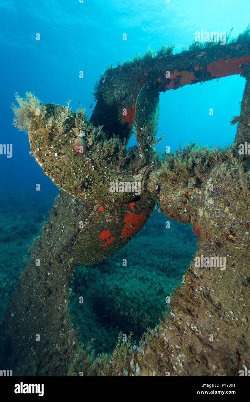 Archilleas wreck, rear, propeller, Paphos, Mediterranean Sea, Southern Cyprus, Cyprus - Stock Image
