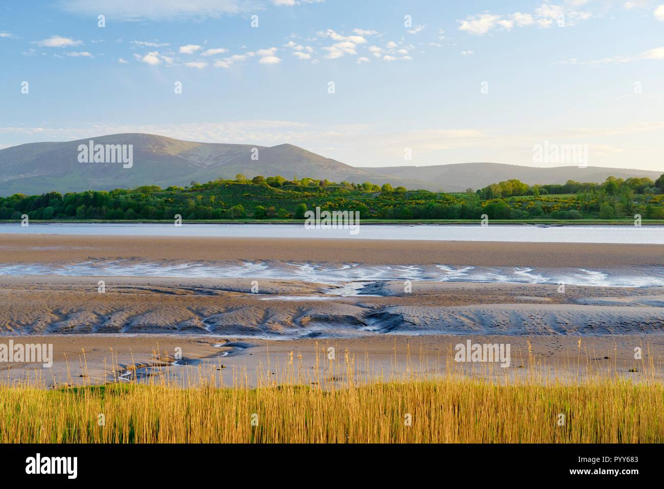 The River Nith, Dumfries and Galloway, Scotland. West across the tidal estuary mud flats on Solway Firth at Caerlaverock toward the mountain of Criffe Stock Photo