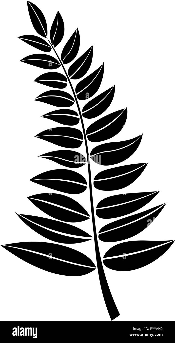 Design Element Vector Black Silhouette Of A Branch With Leaves