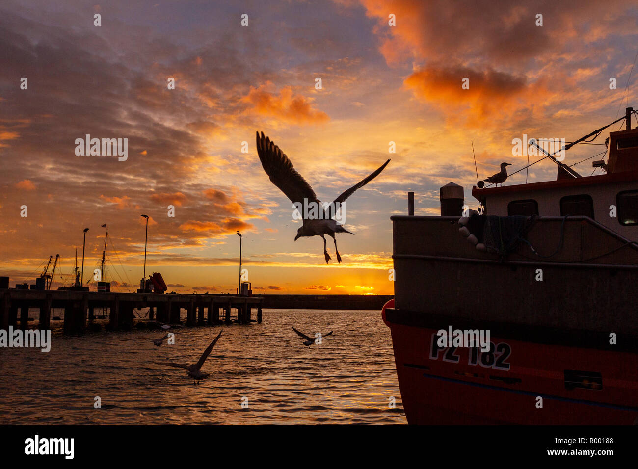 Newlyn, Cornwall, UK, 31st October 2018. Stunning red skies over the fishing port of Newlyn this morning. Credit: Mike Newman/Alamy Live News. - Stock Image