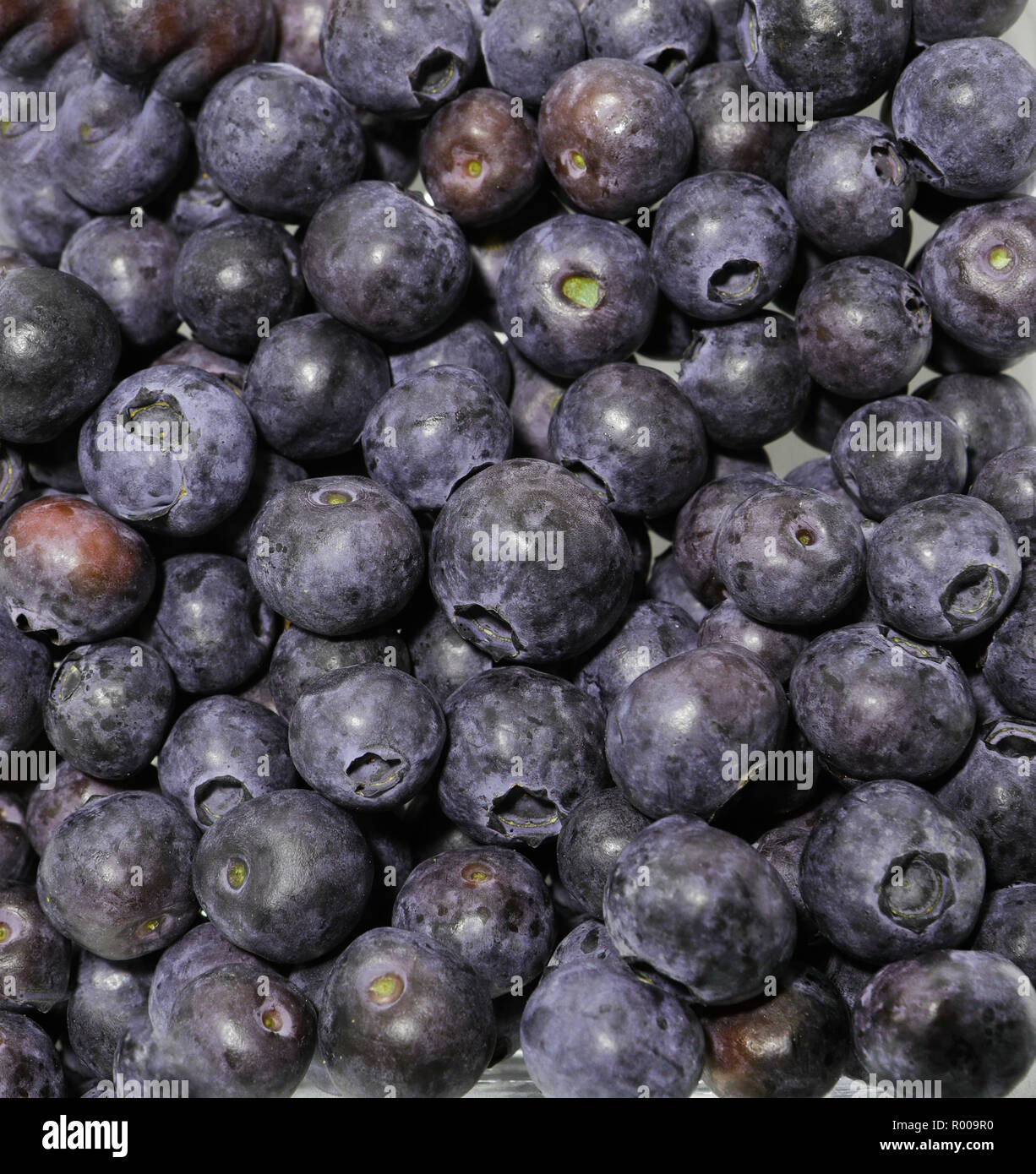 Blueberries. Antioxidant. Fruits concepts. France - Stock Image