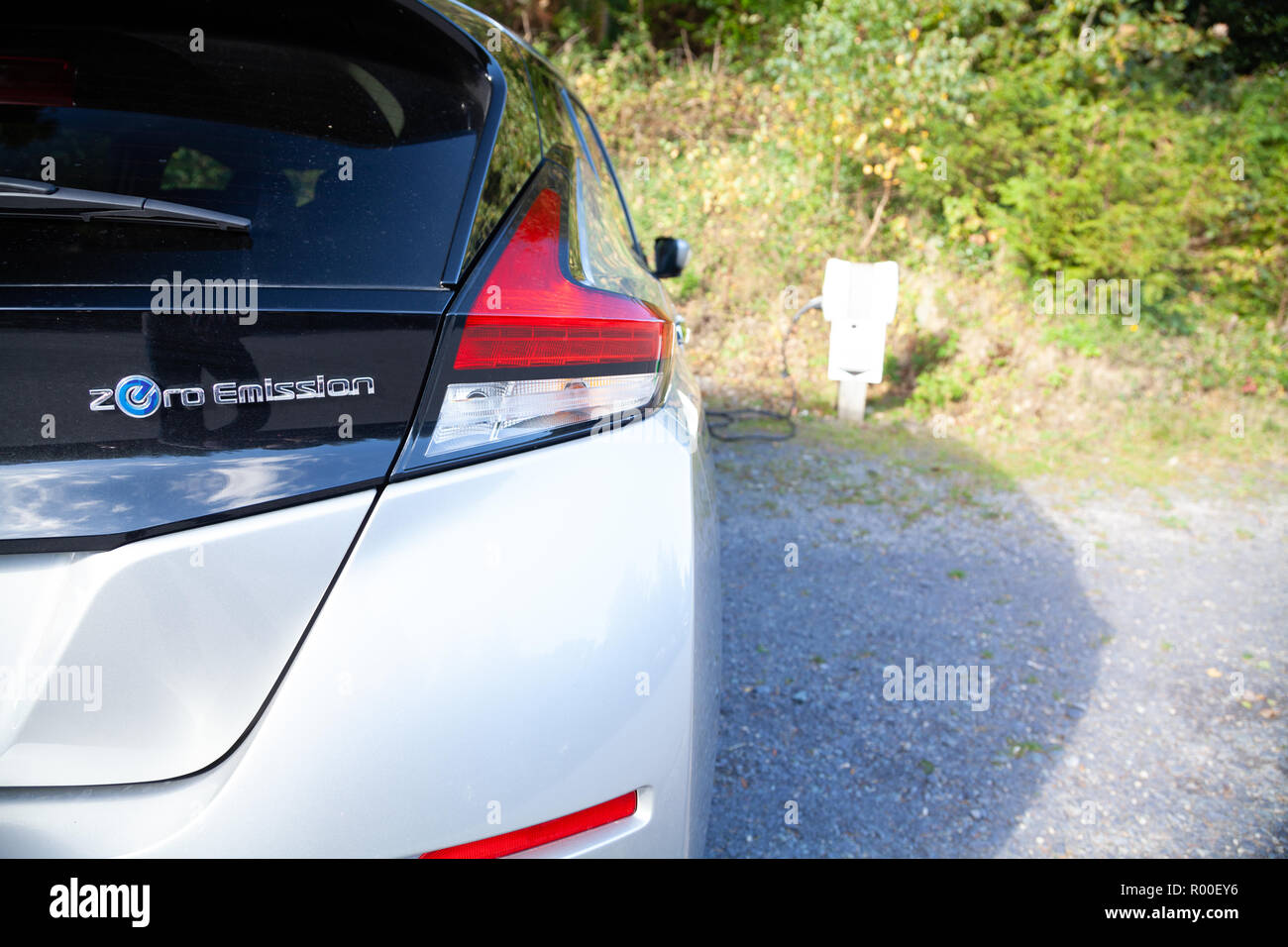 Nissan Leaf 2018 charging at a National Trust Wales free electric car charging station in Penrhyn Castle, Bangor, North Wales Stock Photo