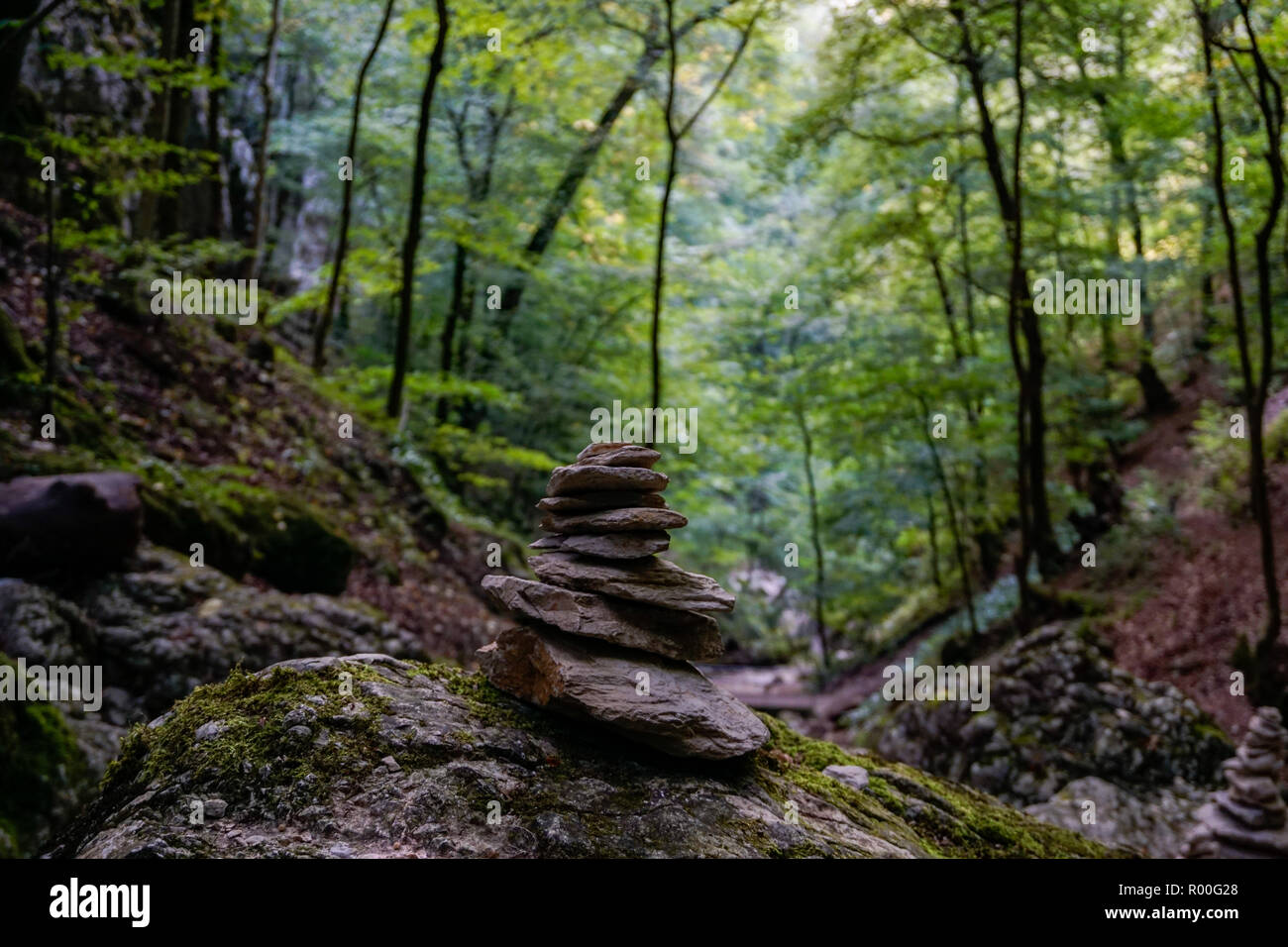 Stone formation in the forest - Stock Image