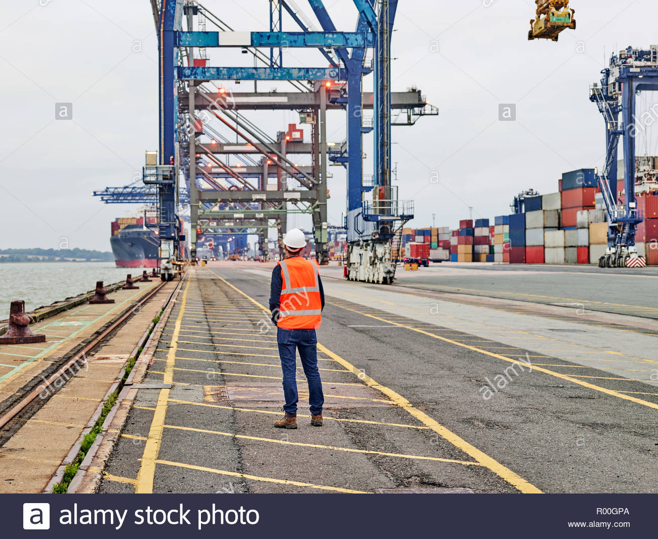 Rear view of dock worker looking at cranes on Port of Felixstowe, England Stock Photo