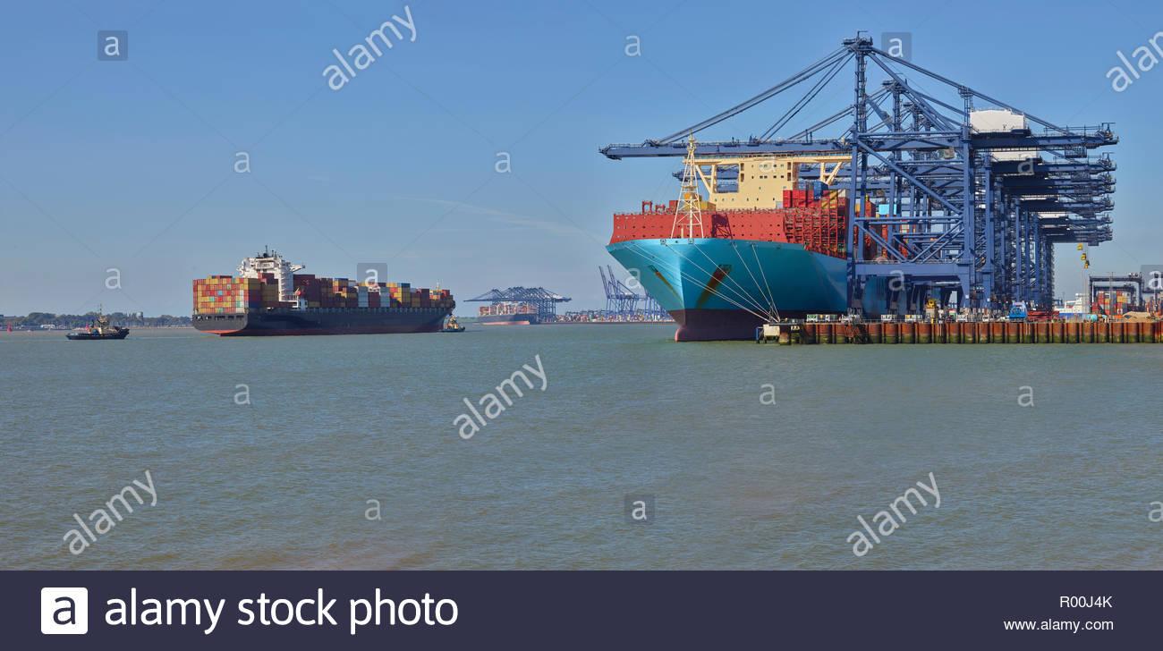 Cargo ship beneath cranes at Port of Felixstowe - Stock Image