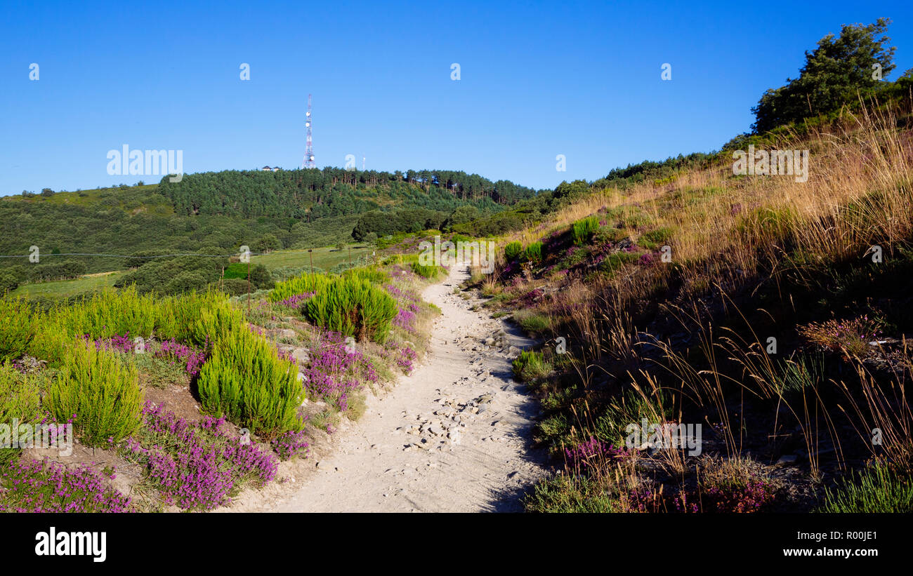 Camino de Santiago (Spain) - Along the way of St.James in the Bierzo landscape Stock Photo