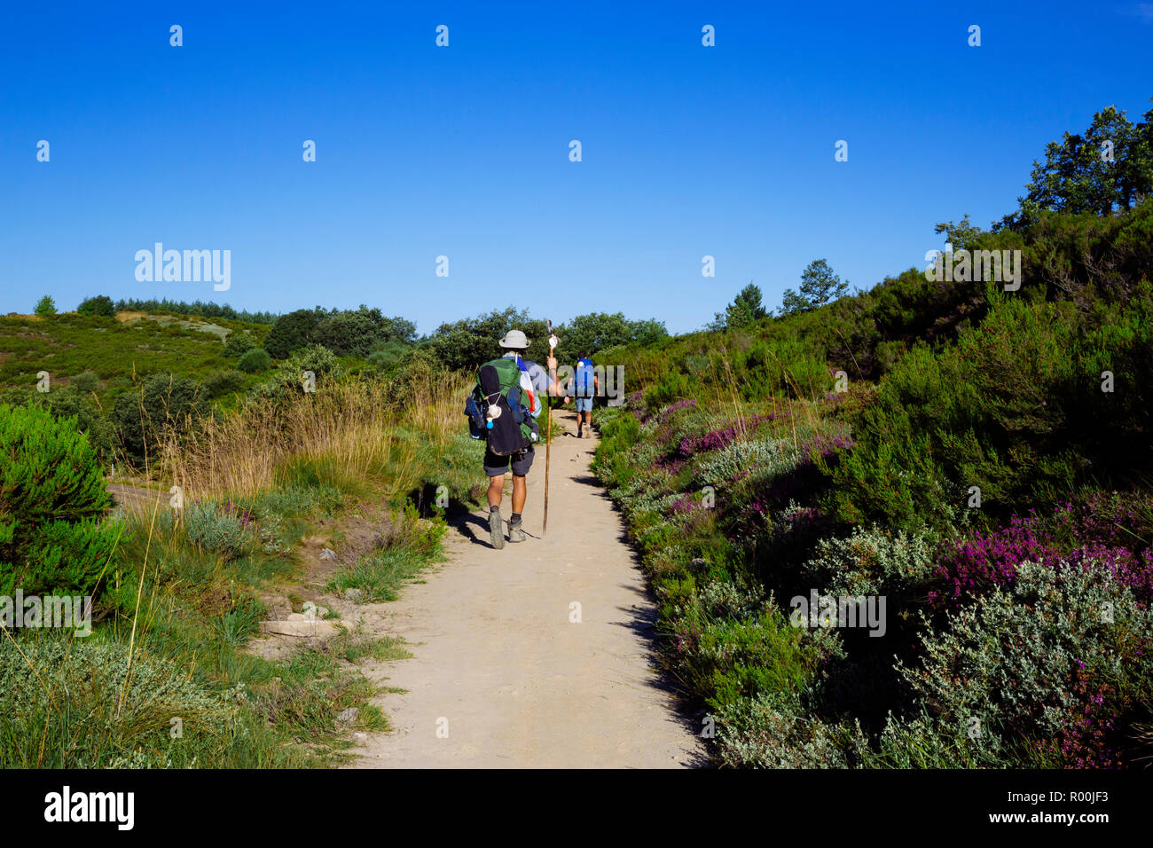 Camino de Santiago (Spain) - Pilgrims walking along the way of St.James, in the Bierzo green landscape Stock Photo