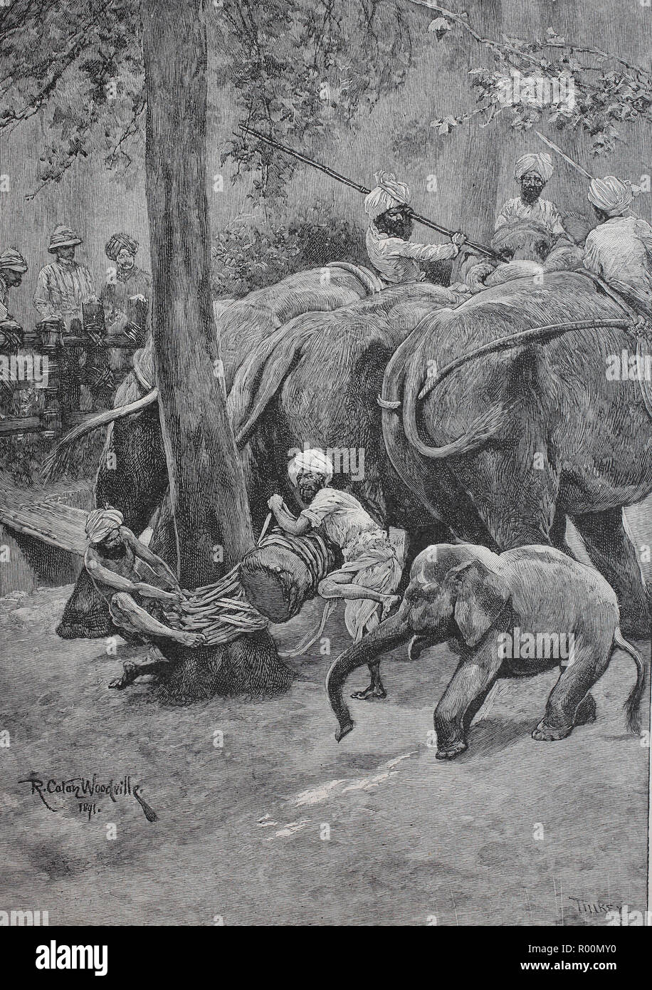 Digital improved reproduction, Bonding of a captive elephant in India, original print from the year 1899 - Stock Image