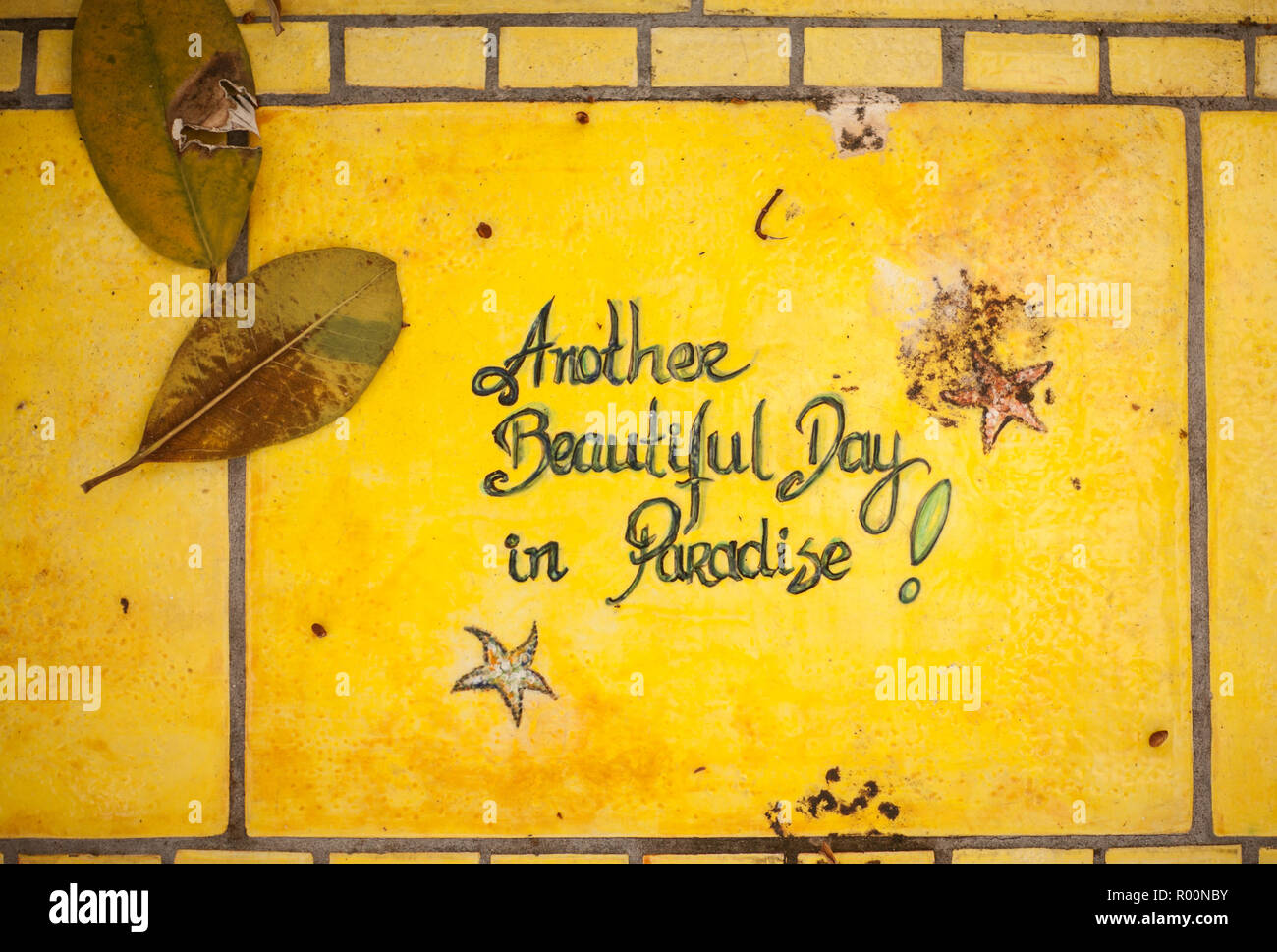 The phrase Another Beautiful Day in Paradise set in yellow ceramic stone with stars and fallen leaves - Stock Image