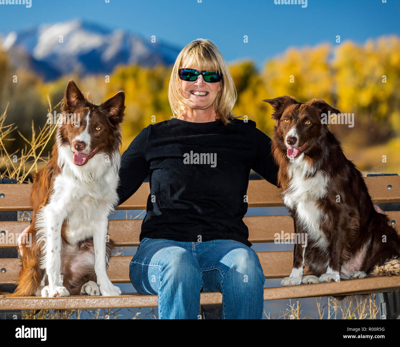Informal outdoor portrait of woman with her two Border Collie dogs in a park; near Salida; Colorado; USA - Stock Image