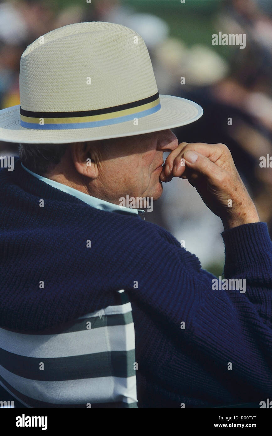 728a6054 Elderly man wearing a panama hat watching a cricket match, Hastings, East  Sussex,