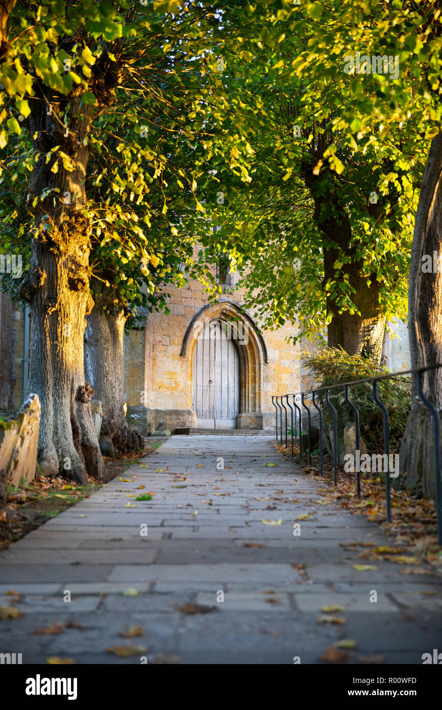 Ash trees lining the path to main door of St James' church, Chipping Campden, Cotswolds, Gloucestershire, England, United Kingdom, Europe Stock Photo