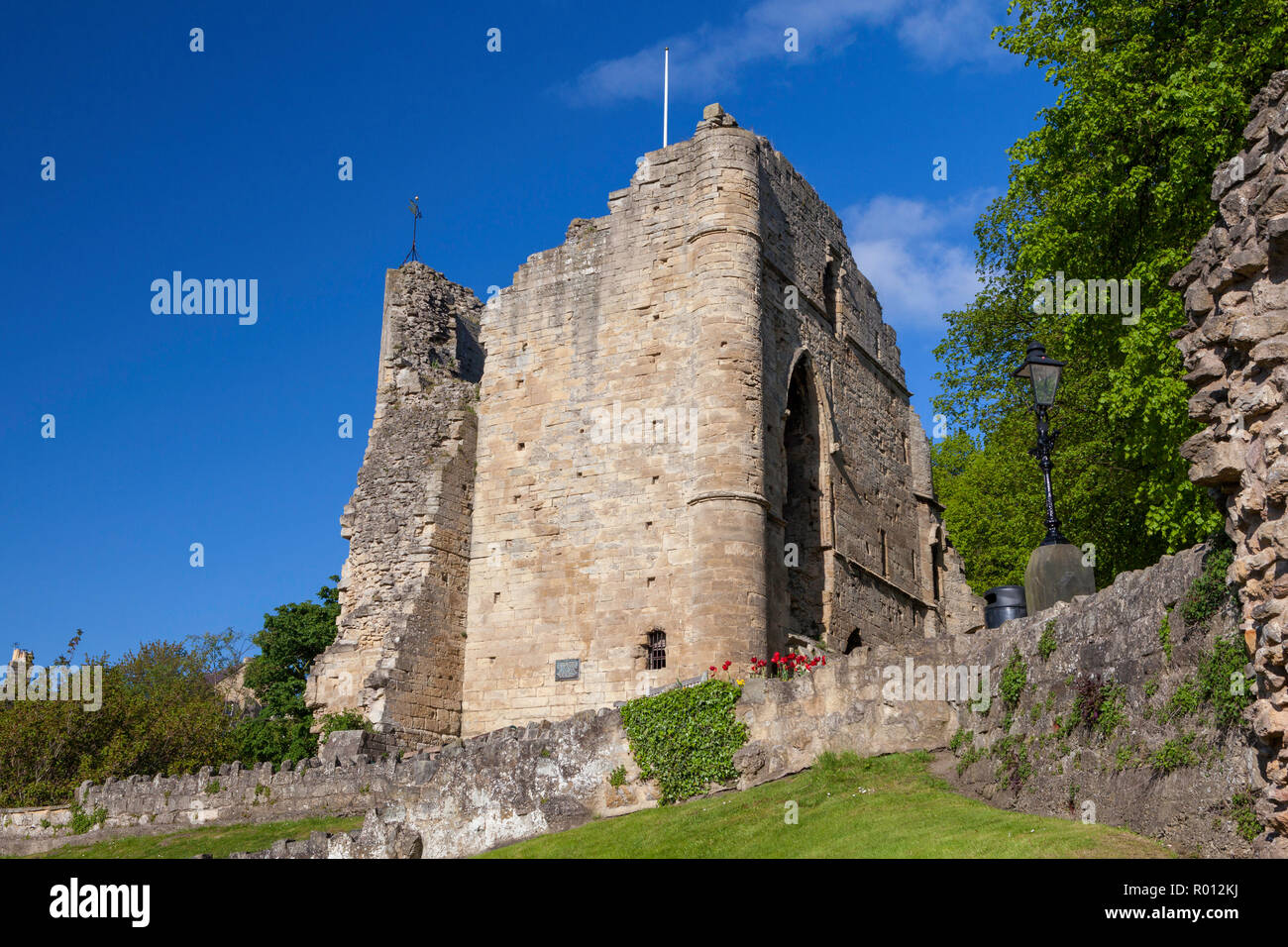 Summer view of the ruined stone keep of Knaresborough Castle, once a medieval fortress, now a popular visitor attraction in this Yorkshire town - Stock Image