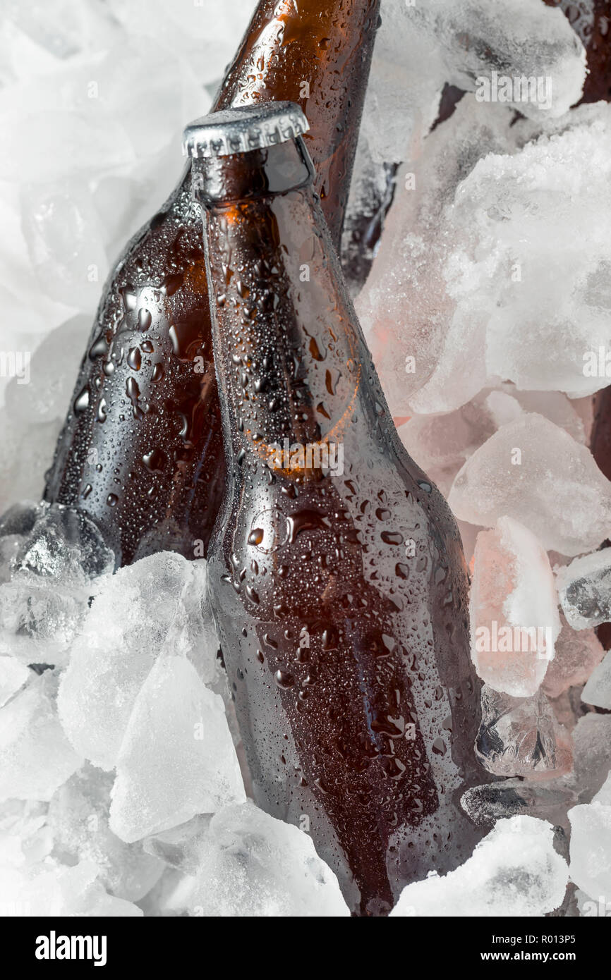 Cold Icy Beer Bottles in a Cooler with Ice - Stock Image