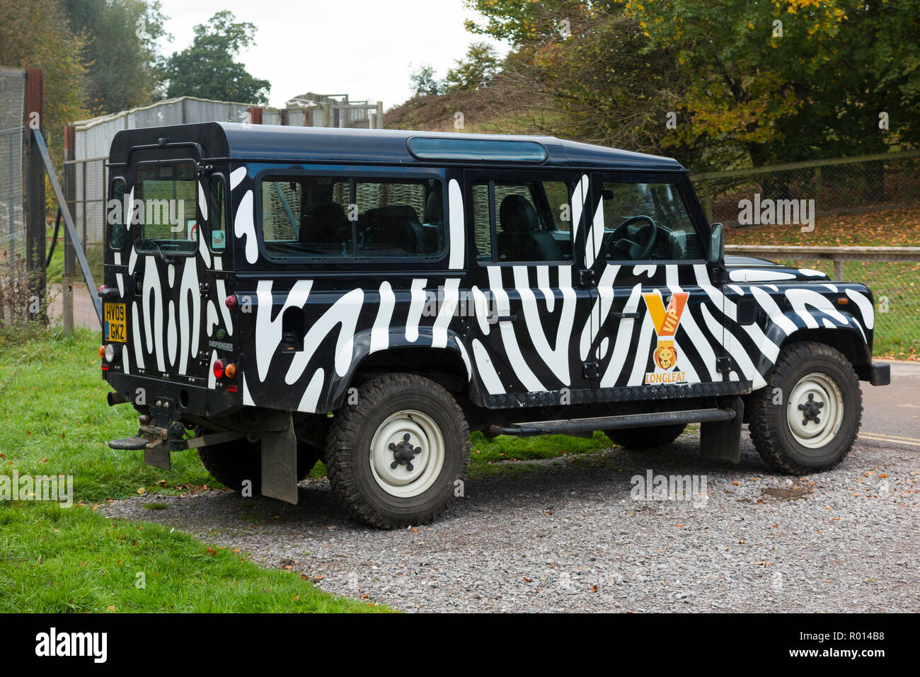 VIP Safari Park Land Rover vehicle / car – in zebra striped stripy camouflage markings – for giving guests a tour at Longleat Safari Park Wiltshire, England, UK (103) - Stock Image