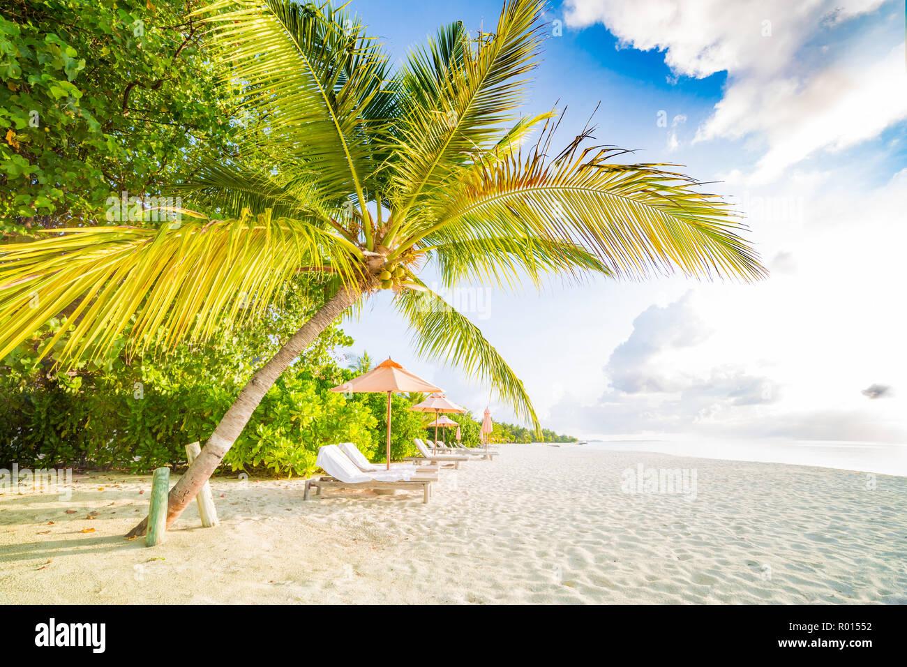 Tranquil Beach Scene Exotic Tropical Beach Resort